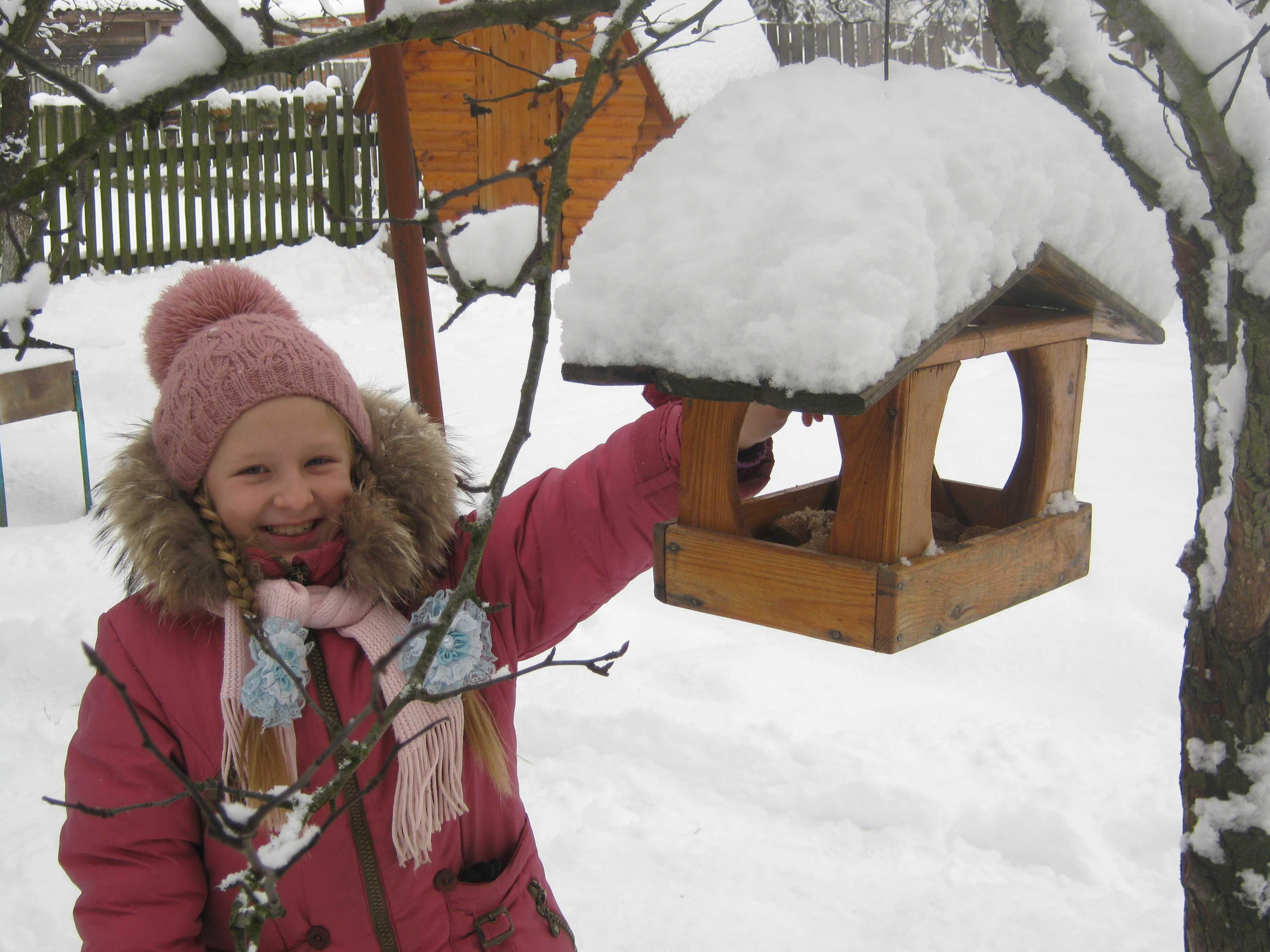 Я допомагаю птахам взимку