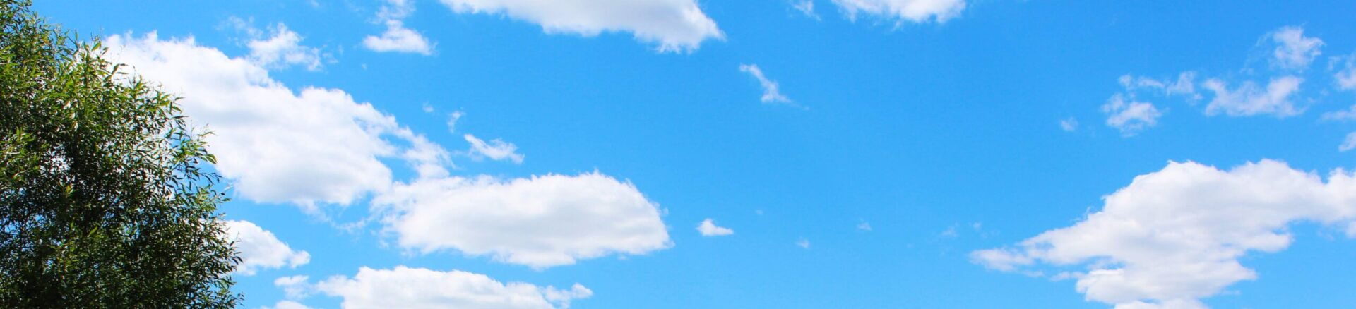 Всесвітній День синички в Народицькому ДНЗ «Сонечко»
